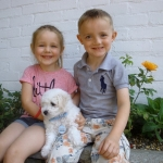 Teddy with Ruby and Jude